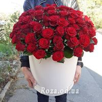 101 red rose in a box - Photo 1