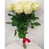 11 white roses - Photo 1