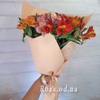 15 alstroemeria - Photo 5