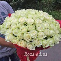 75 white roses 70 cm - Photo 1