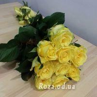 9 желтых роз - Фото 1