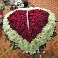 Heart of 350 roses - Photo 1