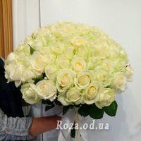 101 біла троянда 60 см - Фото 1