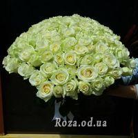 101 біла троянда 60 см - Фото 2