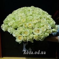 101 белая роза 60 см - Фото 2