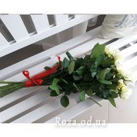 11 white roses - Photo 2