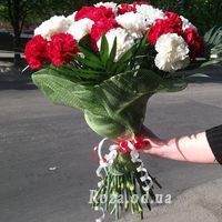 25 white and red carnations - Photo 1