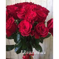 25 import roses - Photo 2