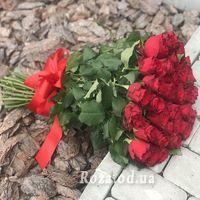 31 красная импортная роза - Фото 1