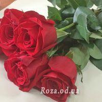 5 красных импортных роз - Фото 1