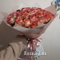 51 roses Jumilia - Photo 1