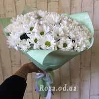 Bouquet of 7 chamomiles - Photo 1