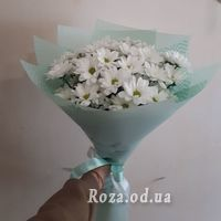 Bouquet of 7 chamomiles - Photo 2