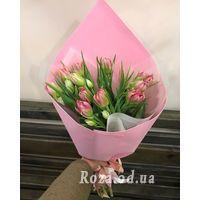 11 різнокольорових тюльпанів - Фото 1