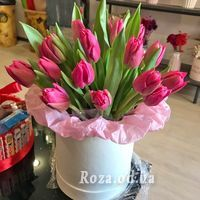 25 тюльпанів в коробці - Фото 1
