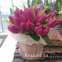 25 tulips in a box - Photo 2
