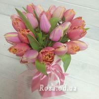 25 тюльпанів в коробці - Фото 3
