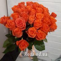 31 adorable orange rose - Photo 1