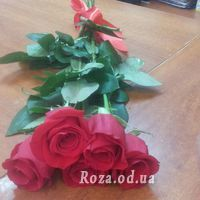 5 красных импортных роз - Фото 2