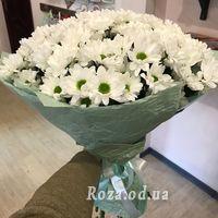Букет 17 ромашковых хризантем - Фото 1