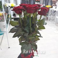11 red roses 70 cm - Photo 1