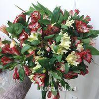 Bouquet of 15 alstromeries - Photo 1