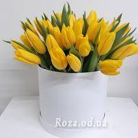 Жовті тюльпани в коробці - Фото 1