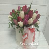 Bouquet of 25 tulips in a box - Photo 1