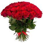 Розы - цветы и букеты на roza.od.ua