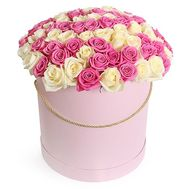 101 white and pink roses in a box - flowers and bouquets on roza.od.ua