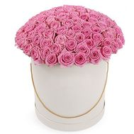 """101 pink roses in a box"" in the online flower shop roza.od.ua"