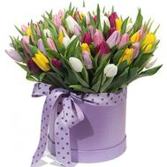 """101 tulips in a box"" in the online flower shop roza.od.ua"