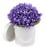 101 ирис в коробке - цветы и букеты на roza.od.ua