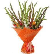 25 multi-colored gladiolus gladiolus - flowers and bouquets on roza.od.ua