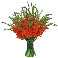 Large bouquet of gladiolus - flowers and bouquets on roza.od.ua