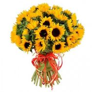 Bouquet of 51 sunflowers - flowers and bouquets on roza.od.ua