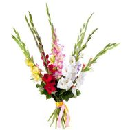 Bouquet of multicolored gladioluses - flowers and bouquets on roza.od.ua