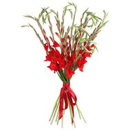 Bouquet of red gladioluses - flowers and bouquets on roza.od.ua