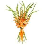 """A bright bouquet of gladiolus"" in the online flower shop roza.od.ua"