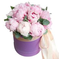 13 pink peonies in a box - flowers and bouquets on roza.od.ua