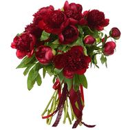 """17 claret pions"" in the online flower shop roza.od.ua"