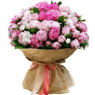 51 peonies - flowers and bouquets on roza.od.ua