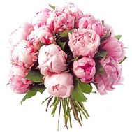 Bouquet of 25 pink peonies - flowers and bouquets on roza.od.ua