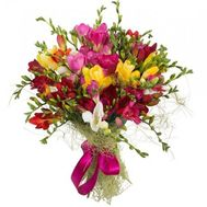 Bouquet of 29 freesias - flowers and bouquets on roza.od.ua