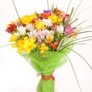 Bouquet of 39 freesias - flowers and bouquets on roza.od.ua