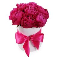 11 burgundy peonies in a box - flowers and bouquets on roza.od.ua