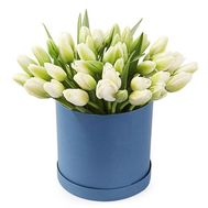White tulips in a box - flowers and bouquets on roza.od.ua