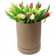 Tulips in a box - flowers and bouquets on roza.od.ua