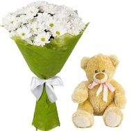 Bouquet of camomiles with a teddy bear - flowers and bouquets on roza.od.ua