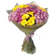 13 multi-colored chrysanthemums - flowers and bouquets on roza.od.ua
